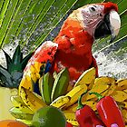 Splish-Splash Summerfresh by Doris B. Lambling&#x27;s colorgetics