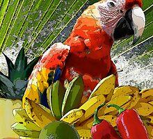 Splish-Splash Summerfresh by Doris B. Lambling's COLORGETICS