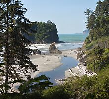 Ruby Beach, Olympic National Park, Washington Coast by Barb White