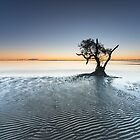 """Singularity"" ∞ Nudgee Beach, QLD - Australia by Jason Asher"