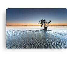"""Singularity"" ∞ Nudgee Beach, QLD - Australia Canvas Print"