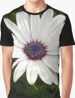 Beautiful Osteospermum White Daisy With Purple Center  Graphic T-Shirt