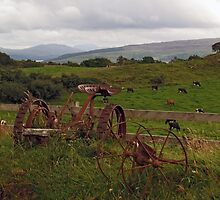 At Sgriob-Ruadh Farm on the Isle of Mull by WatscapePhoto