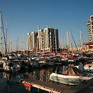 Boats in the Marina by Nira Dabush