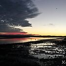 Low Tide on Hays Inlet by -aimslo-