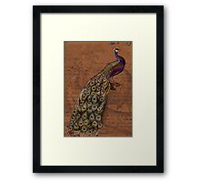 Glory of the Peacock #1 Framed Print