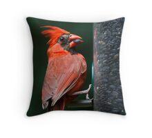 Cardinal Feasting on Sunflower Seeds Throw Pillow
