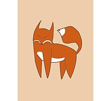 Mister Fox Photographic Print