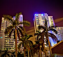 Miami Nights - Brickell V by Terry Neves