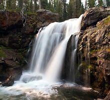 Moose Falls, Yellowstone National Park  by Teresa Zieba