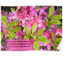 PINK PEACE    BIBLE TEXT/BESPOKE TEXT/BLANK TEXT Poster