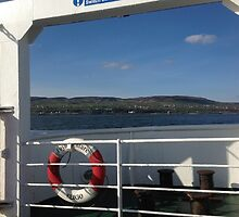 From the Foyle Ferry, Ireland by joanshannon