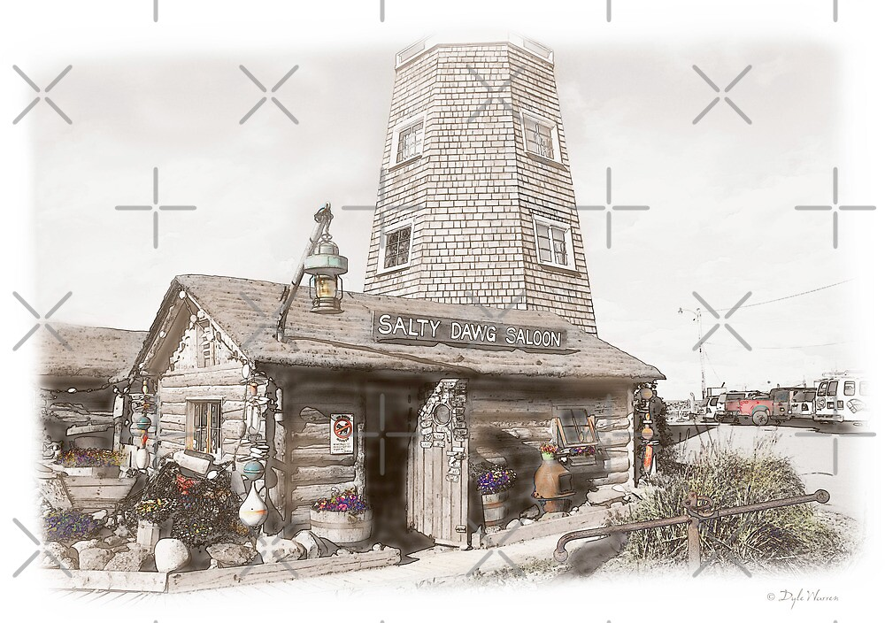 The Salty Dawg Saloon by Dyle Warren