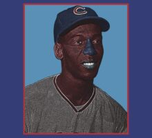 Ernie Banks Chicago Cubs Culture Cloth Zinc Collection by CultureCloth