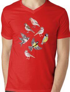 Illustrated Birds Mens V-Neck T-Shirt