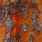 Bark 3 by melanie1313