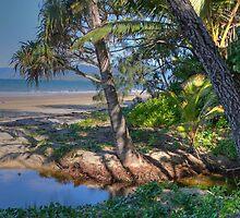 Port Douglas, North Queensland by Adrian Paul