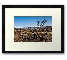 After the Burn Framed Print