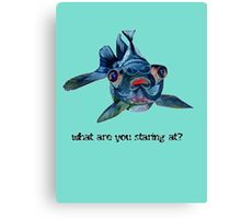 What Are You Staring At? Canvas Print