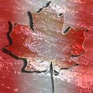 Canadian Flag by theartguy
