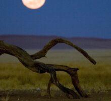 Moon set in the desert.  Sticker