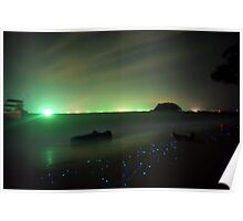 Bio-luminescent Plankton  Poster