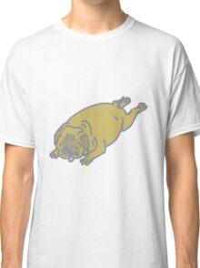 pug belly Classic T-Shirt