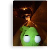 Frog Kermit Slip Mine Salt Mine Canvas Print