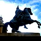 Duke of Wellington Memorial ~ Edinburgh by ©The Creative  Minds