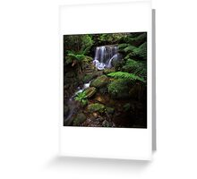Leura Weeping Rock Greeting Card
