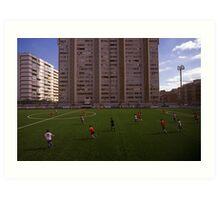 football stadium at Carrer de les Camèlies, Barcelona 2010 Art Print