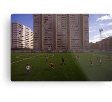 football stadium at Carrer de les Camèlies, Barcelona 2010 Metal Print