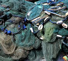 fishing net by Raymond Cooper