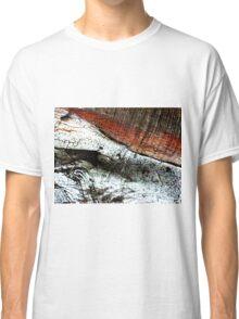 Nature as Artist 218 Classic T-Shirt