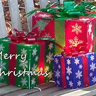 Merry Christmas by Sandra Lee Woods