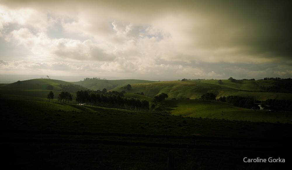 Victorian Landscape by Caroline Gorka