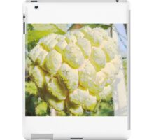 Drawings fruit custard iPad Case/Skin