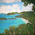 Trunk Bay, Caribbean by Teresa Dominici