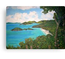 Trunk Bay, Caribbean Canvas Print
