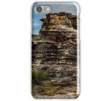 Pergoda panorama iPhone Case/Skin
