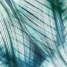 Nature Leaves Abstract in Turquoise and Jade by Natalie Kinnear