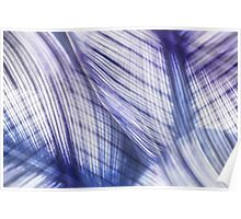 Nature Leaves Abstract in Blue and Purple Poster