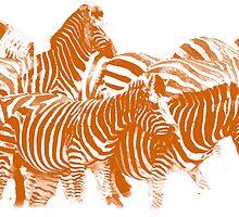 Zebra (Burning Orange) by Joe Stallard