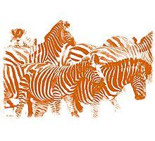 Zebra (Burning Orange) Photographic Print