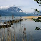 Mother's Day Walk Along Thunersee by M-EK