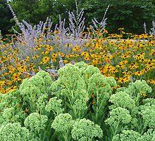Lovely Perennials by Lynn Gedeon