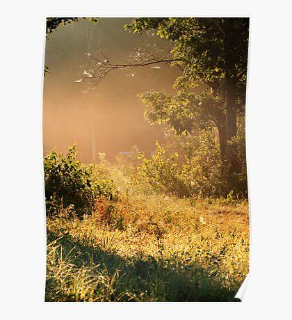 Misty Morning Salt Marsh Pond, Gilford, NH Poster