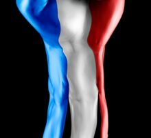 France strength and unity Sticker