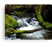 Rushing Water Canvas Print