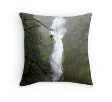 Munson Creek Falls Throw Pillow